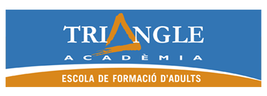 Logo Triangle Academia